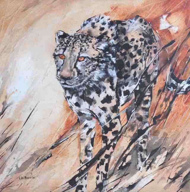 Cheetah Hunting, acrylic on stretched canvas, 60 x 60 cm