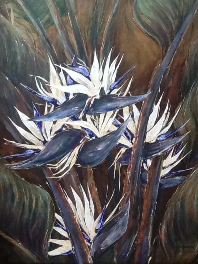Strelitzia nicolae oil on stretched canvas 130 x 100 cm.