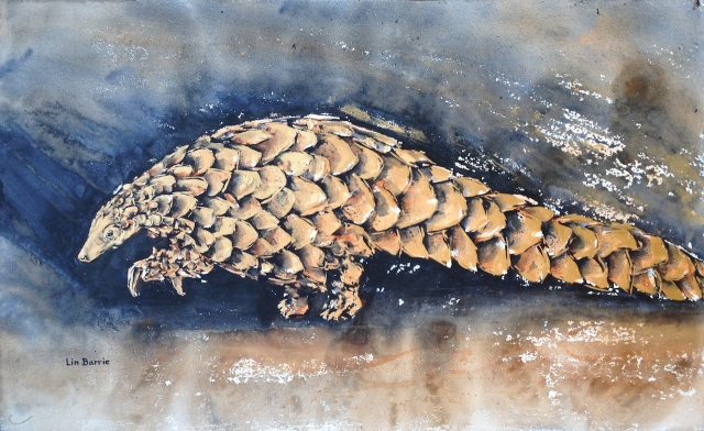Old Gold Pangolin, acrylic on loose canvas, 57 X 93 cm lo res.jpg