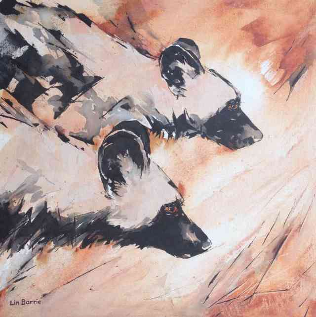 Wild dogs hunting, acrylic on stretched canvas, 60 x 60 cm