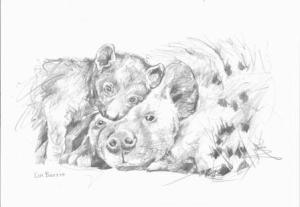 spotted hyena and cub