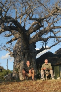 Clive and Dad share a baobab