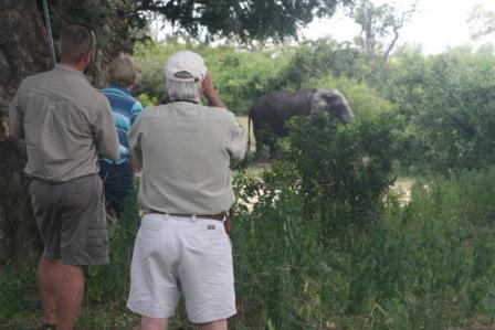 John Laing and Chilo Gorge guests enjot an elephant