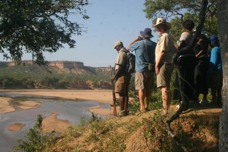 Thomas and guests admire a crocodile in the Runde river
