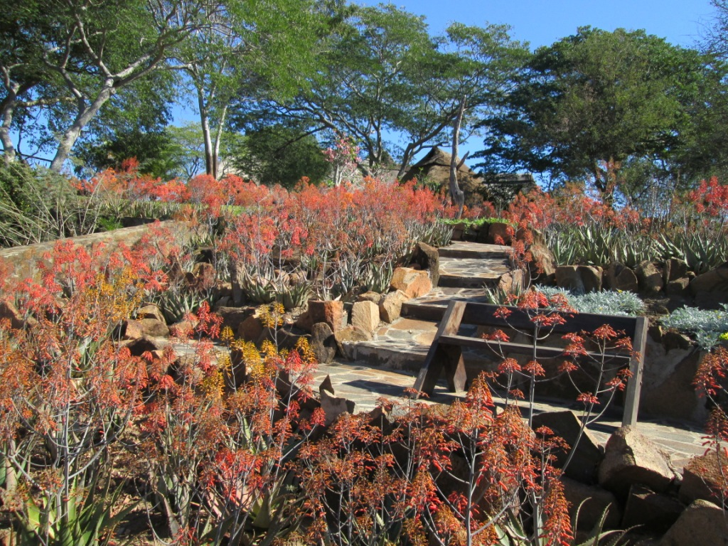 Chilo Gorge Lodge Gardens | wineandwilddogs