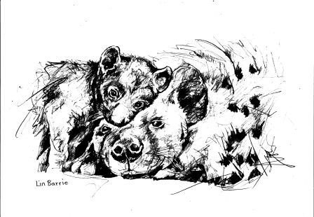 hyena and cub