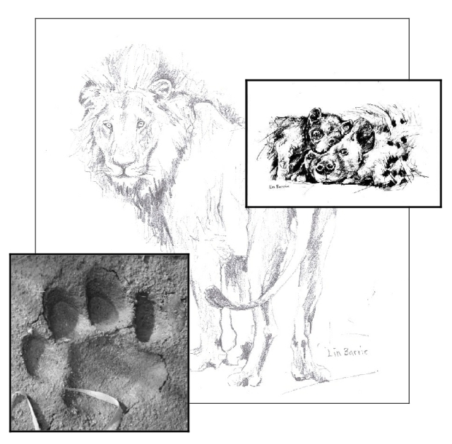lions and hyenas at Chilo Gorge