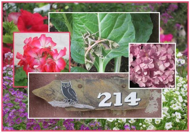 214 Brooke Drive Garden