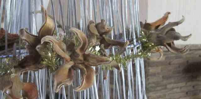 Baobab Pods decoration