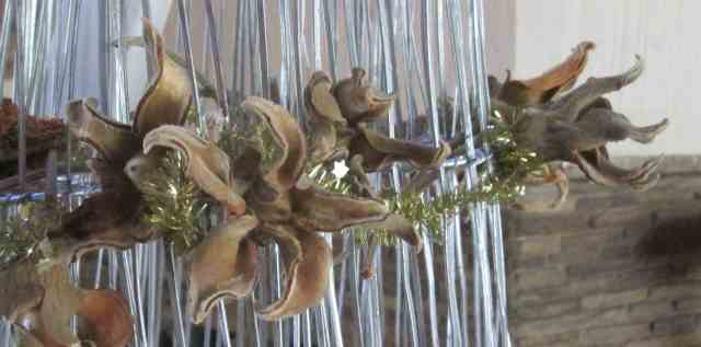 Baobab Pods decoration