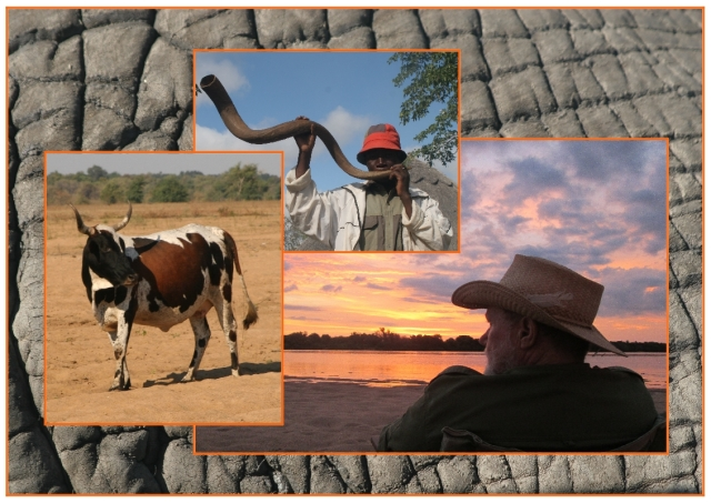 Clive and elephants, sunsets and community...