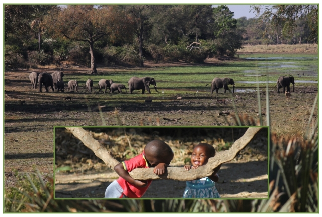 Parks staff children and elephants at Tembweharta Pan in Gonarezhou...