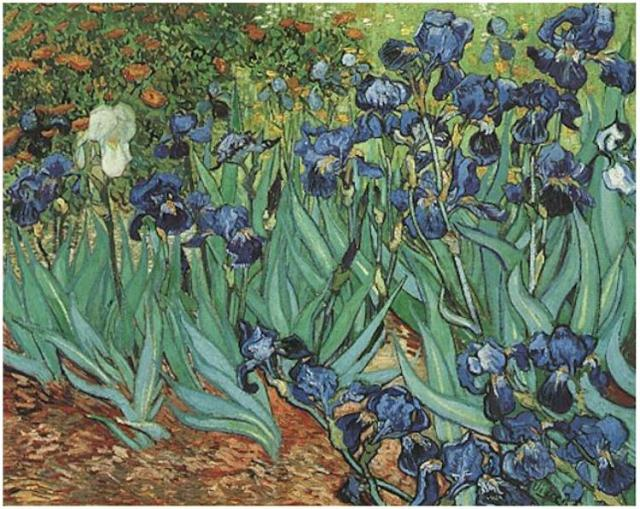 """Irises"" by Vincent  Van Gogh"