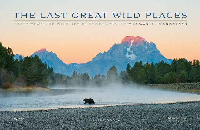 The Last Great Wild Places Cover -- First light strikes the summit of Mount Moran painting the sky orange as a female grizzly wades a shallow bend in the Snake River in Grand Teton National Park, Wyoming.