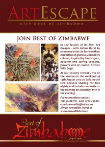Art Escape at Inn on the Vumba....exciting!