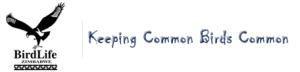 BLZ logo4
