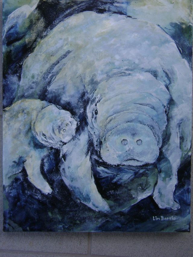 baby manatee suckling-oil on canvas