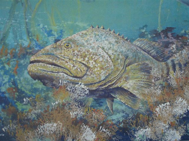 Giant Grouper Fish by Lin Barrie