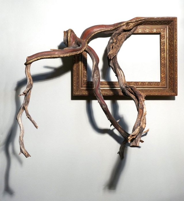 darryl-cox-fusion-frames-nw-fallen-branches-melded-with-old-frames-5