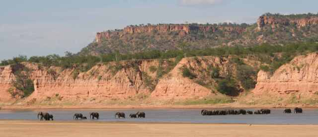 elephants crossing the Runde river -lo res