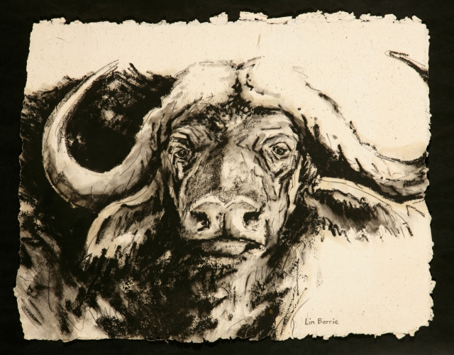 Lin Barrie - buffalo on handmade paper