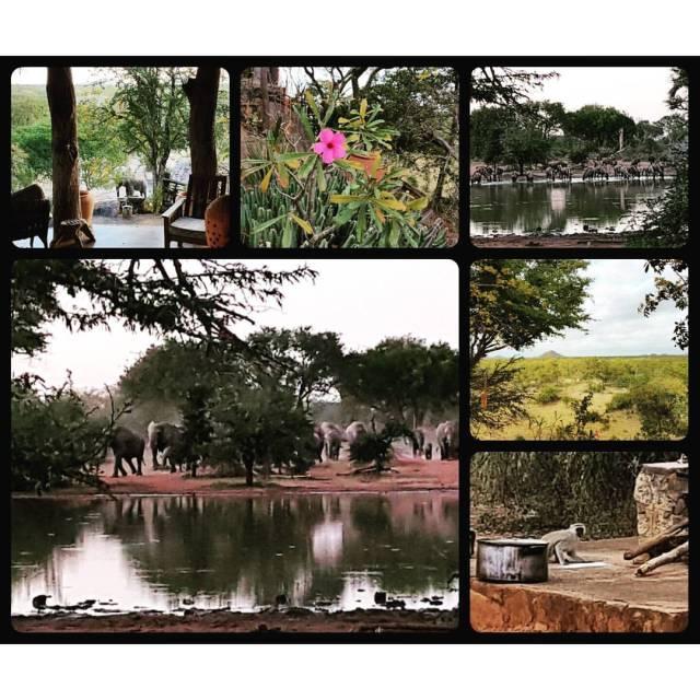Robyn's photos of our Tsavene house