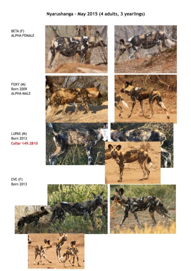 Nyarushanga ID 2015 page 1 lo res