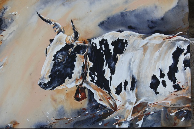 an-old-nguni-cow