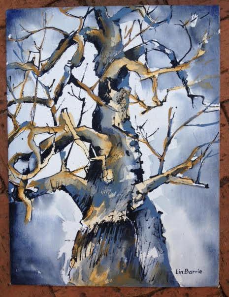 chitove baobab.jpg