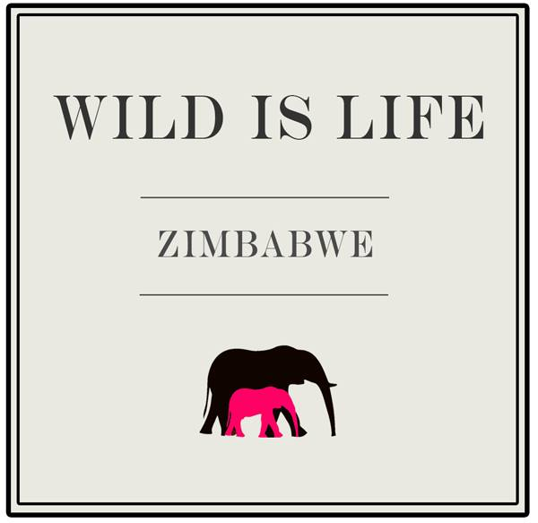wild is life logo.jpg