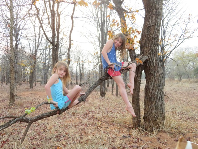 jade and rayne in mopani woodland.jpg