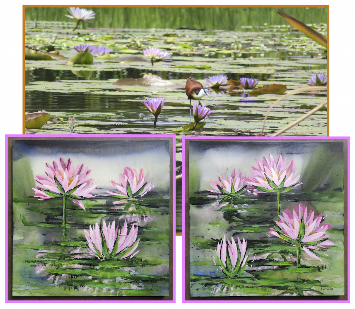Pink waterlilies I and II, acrylic on stretched canvas, each panel 2 x 2 feet, lo res.jpeg